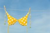 Little Polka Dot Bikini: The Effects of Body Dysmorphia
