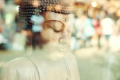 Find Your Zen: Be Proactive, Not Reactive