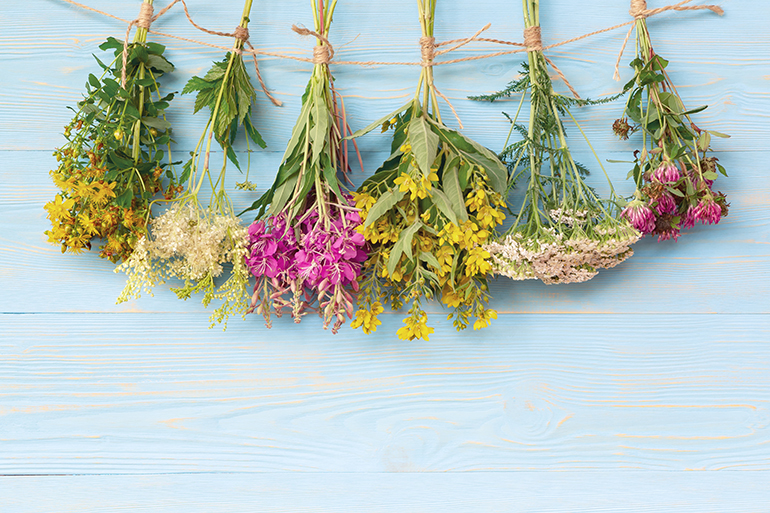 6 fresh flower and herb bundles from a home garden hang from a string to dry in front of a blue painted wall.