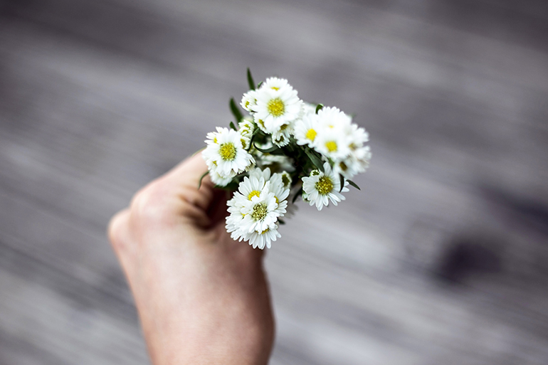 Person holds little white flowers in their hand between their thumb and pointer finger. The background is grey.