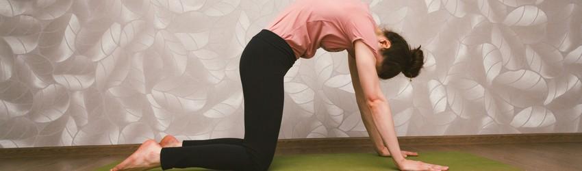 Cat-cow yoga pose.