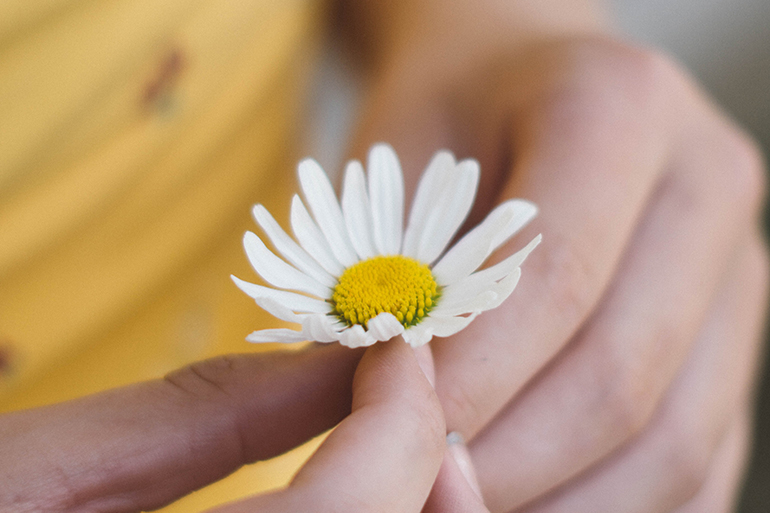 Person wearing yellow holding a white daisy in their hands.