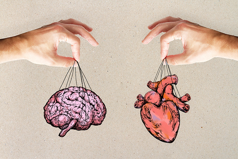 A brain and a heart meeting together
