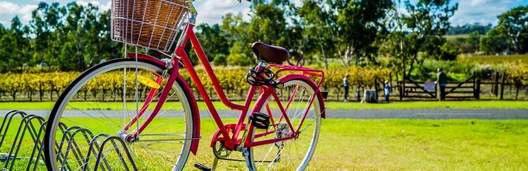 A bike on green grass.