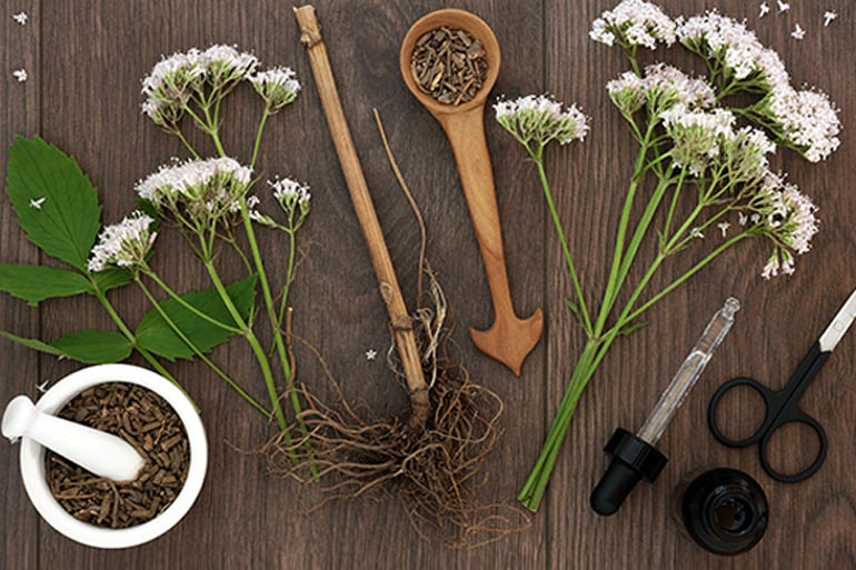 Heard of Valerian Root? Learn How It Helps Reduce Anxiety