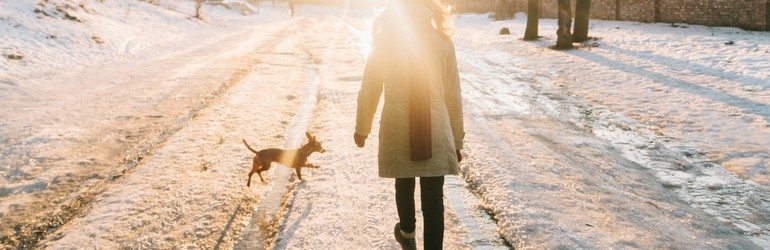 A woman walks her small dog at a snowy dog park. The dog is jumping through tire tracks and the woman is bundled up in a huge coat. They walk towards the sun which causes a flare in the image.