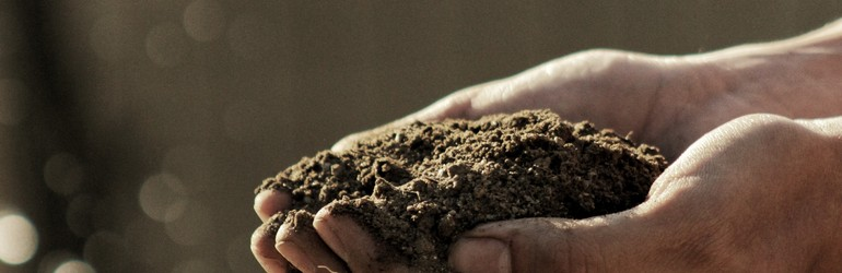 Person holding soil in their hands.