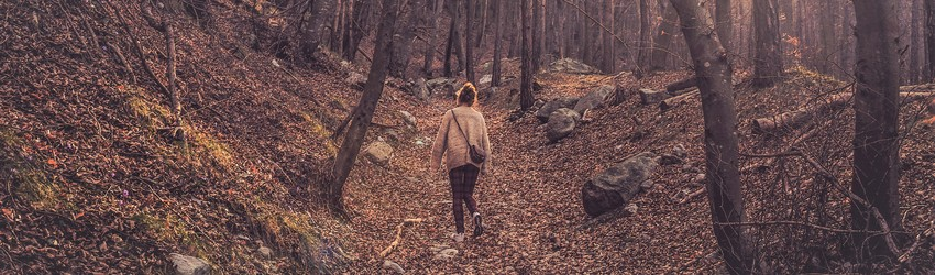 Woman walks alone through the woods during autumn.