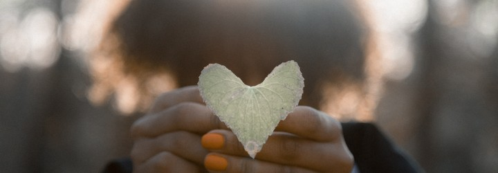 A person in a forest holds a heart made out of a leaf towards the camera.