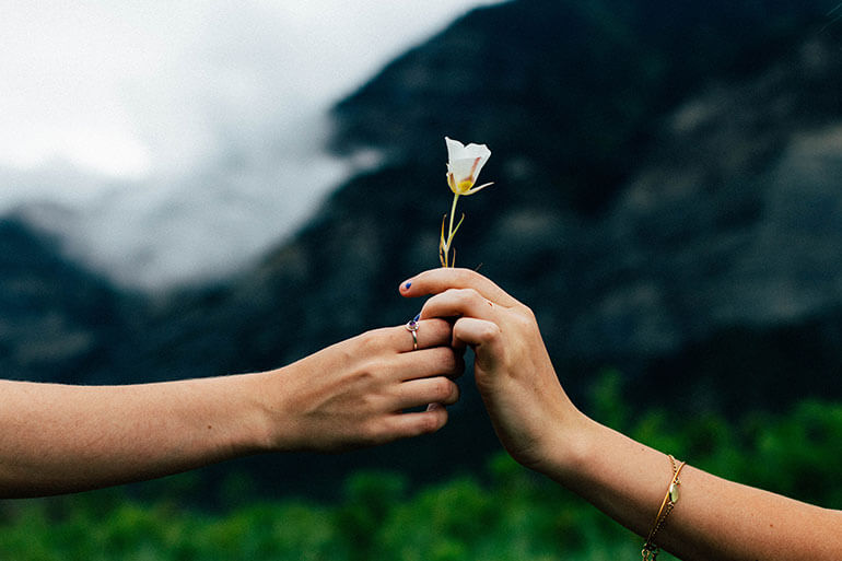 person giving someone a white flower